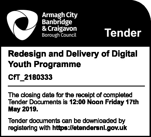 Redesign and Delivery of Digital Youth Programme